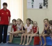 спортивная гимнастика СКА