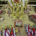В Брянске выступит 250 юных гимнасток.