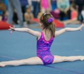Открытое первенство по спортивной гимнастике.