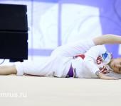Обучение гимнастическим упражнениям.